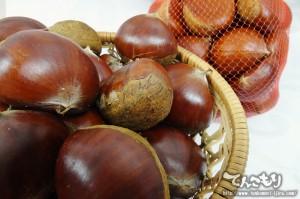 秋の果実「栗」