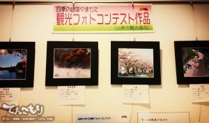 photo_contest13