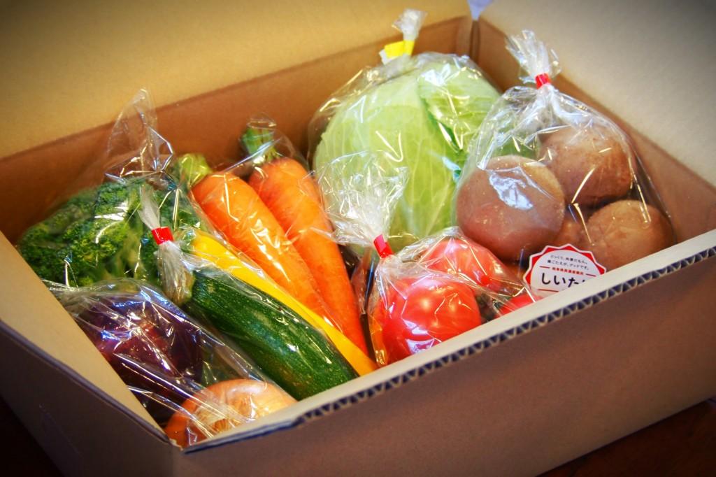 写真_野菜の通販をはじめました!